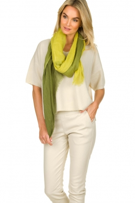 Moment by Moment |  Linen scarf Blue | green