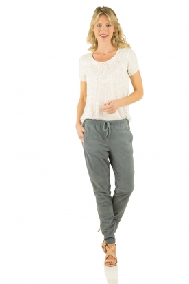 Suede pants | blue-grey