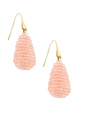 Miccy's |  Earrings Crystal Drops | pink