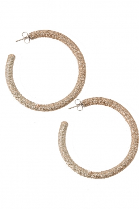 Earrings Openhoop | gold