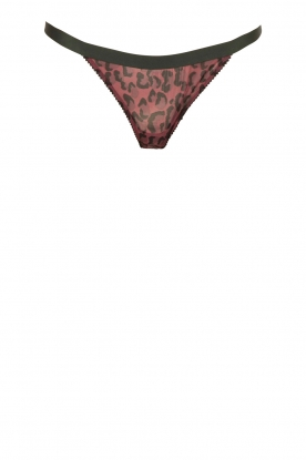 Brief with lace Roomservice | dark pink