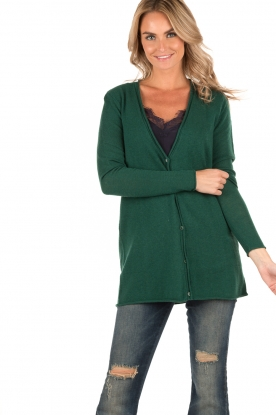 Fine knit Svansky | green