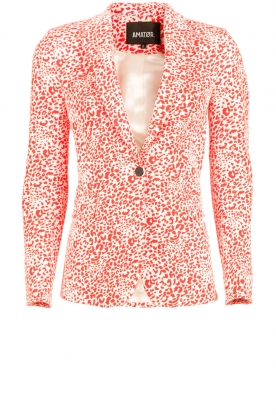 Amatør |  Blazer Stine | red