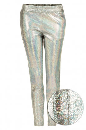 Suite 22 |  Leather pants Hudson | silver