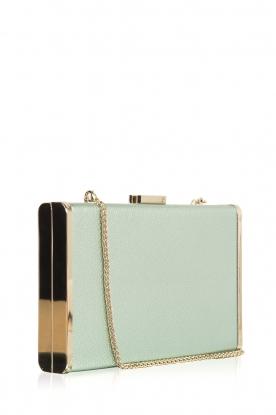 ELISABETTA FRANCHI | Clutch Rigid | groen