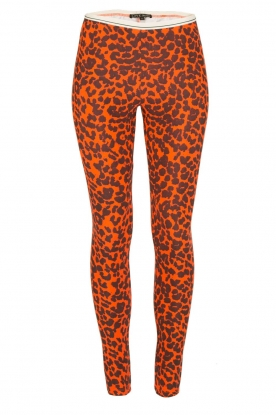 Love Stories | Sportlegging Leopard Pumpkin | oranje