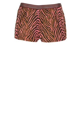 Love Stories | Short Zebra Shade | roze