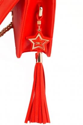 ELISABETTA FRANCHI | Schoudertas logo Anika | rood