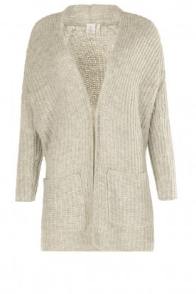 Knit-ted | Vest Blue | grijs