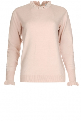 Dante 6 |  Sweater Trixie | pink