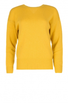 Essentiel Antwerp |  Sweater Ostheo | yellow