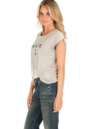 Dante 6 | T-shirt logo | grijs
