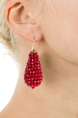 Miccy's | Oorbellen grote kristallen Druppel | Rood