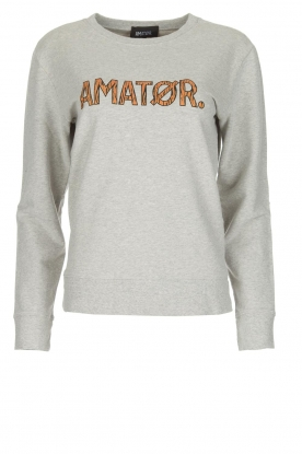 Amatør |  Sweater Baby Zebra | grey