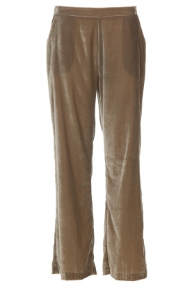 Dante 6 |  Velvet pants Seduce | taupe