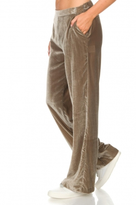 Dante 6 | Fluwelen broek Seduce | taupe