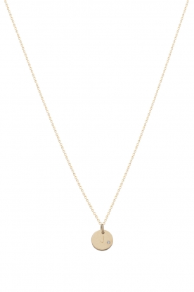 Just Franky |  14kt golden necklace Coin Diamond 40 cm | gold