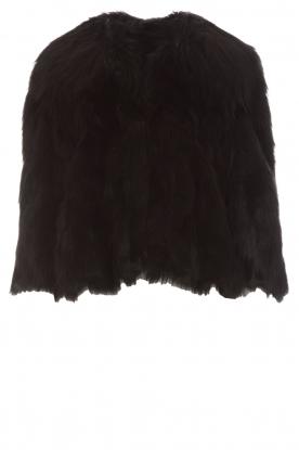 ELISABETTA FRANCHI | Faux fur jas Beau | zwart