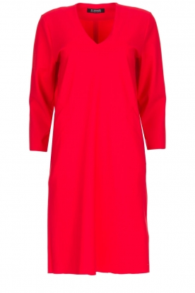D-ETOILES CASIOPE | Dress Poirette | red