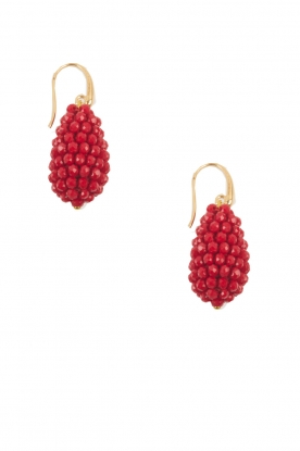 Miccy's | Oorbellen Crystal Drops Small | rood