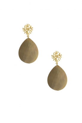 Lilly |  18k gold plated earrings Treestud Shelldrop | gold