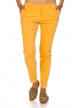 MASONS |  Chino pants New York Velvet | yellow