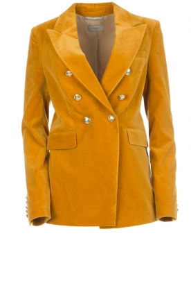 Hunkydory | Fluwelen blazer Ivory | geel