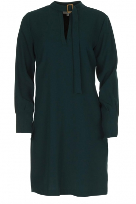 Dante 6 |  Dress with buckle detail Kacey | green