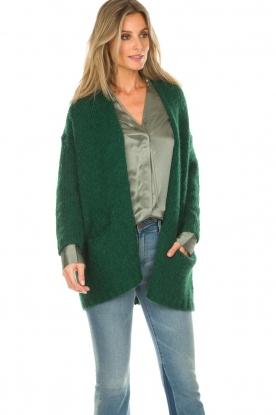 American Vintage | Vest Boolder | groen