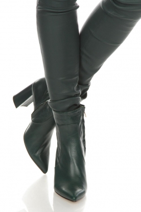 Noe |  Leather ankle boots Nipola | green