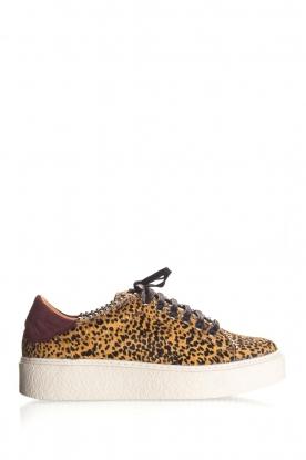 SVNTY | Leather sneakers Praia | print