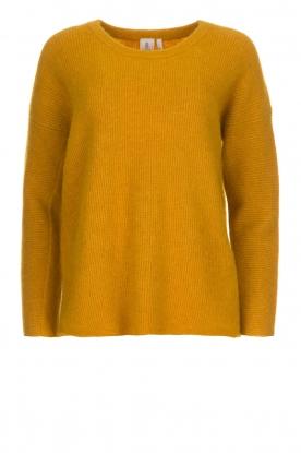 Knit-ted   Trui Tatum   geel