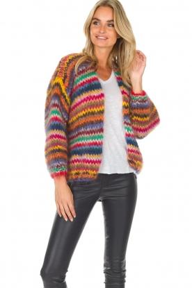 Les tricots d'o   Wollen vest Fleur   multi