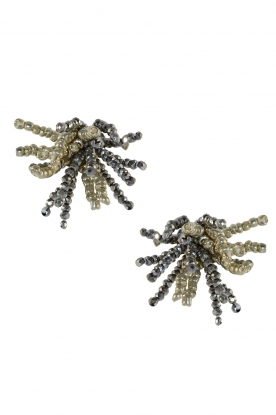 Miccy's |  Earrings with crystal Ragno | silver