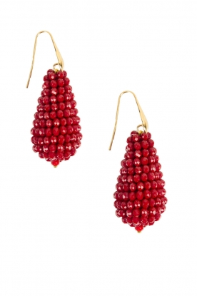Miccy's |  Earrings big crystal Drop | Red