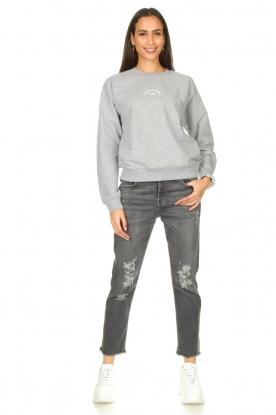 Look Destroyed boyfriend jeans Asher