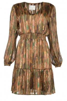 Dante 6 |  Printed dress Olivia | multi