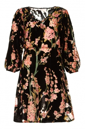 Freebird | Velvet dress with floral print Floor | pink