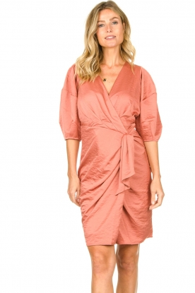 Notes Du Nord |  Puff sleeve dress Penelope | pink