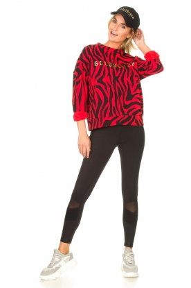 Look Zebra printed sweater Tifani