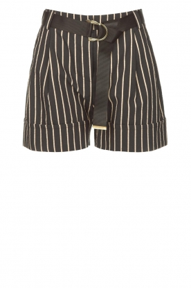 Silvian Heach |  Lurex striped short Susani | black