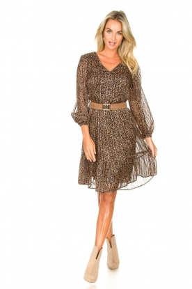 Look Giraffe print dress Imke