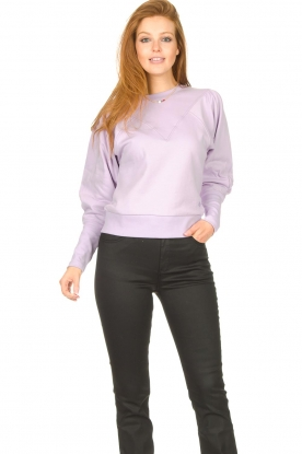 Dante 6 |  Sweater Beau | purple