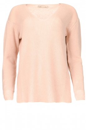 Blaumax | Cotton sweater Ann | pink