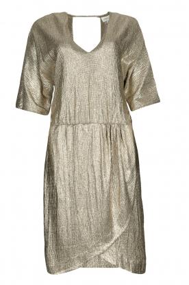 Dante 6 |  Metallic dress Dallas | silver