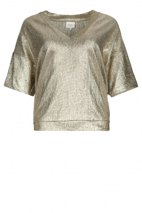 Dante 6 | Metallic top Rae | zilver