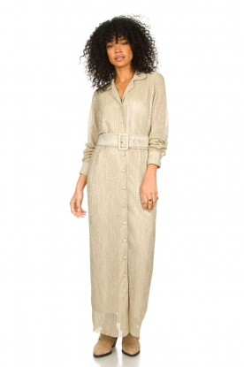 CHPTR S |  Luxe maxi dress Frost