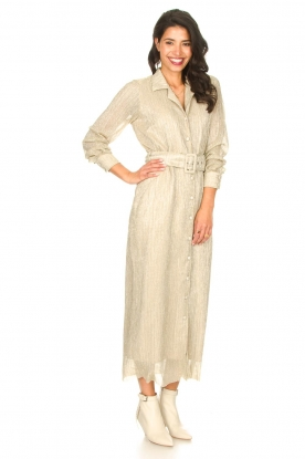Look Luxe maxi dress Frost