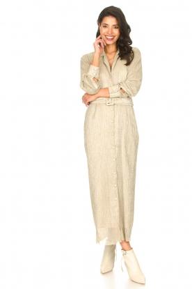 CHPTR S | Luxe maxi-jurk Frost | goud