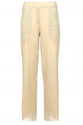 CHPTR S |  Wide lurex pants Rocky | gold